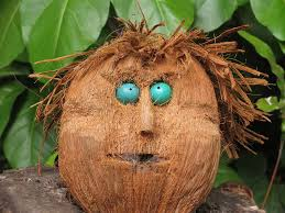 Any resemblance between myself and this coconut is purely coincidental.